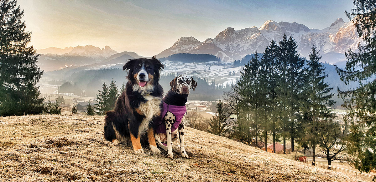 Lilly und Stella